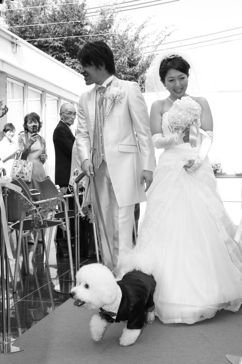 006 wedding-0121
